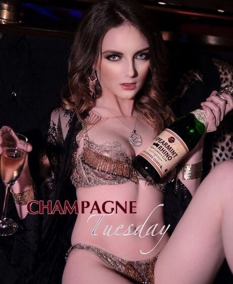 Champagne Tuesday